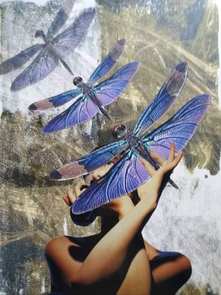 Dragon-fly collage maria vega
